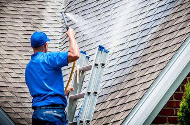 fremont roof cleaning